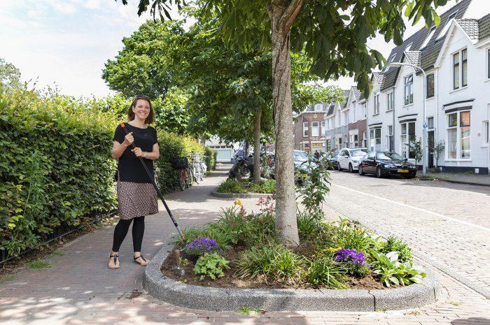 Haarlemmers maken de straten groener!